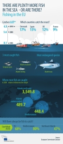 EU fishing stats 040213
