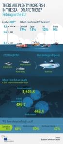 EU fishing stats 040213